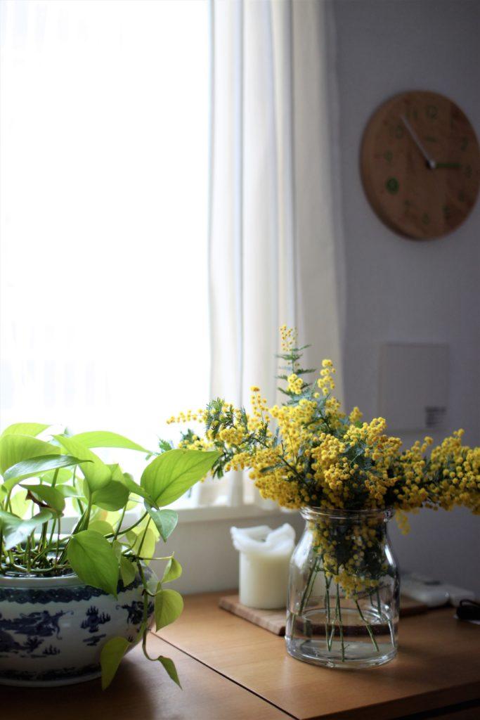 ミモザを飾って春のインテリアになりました