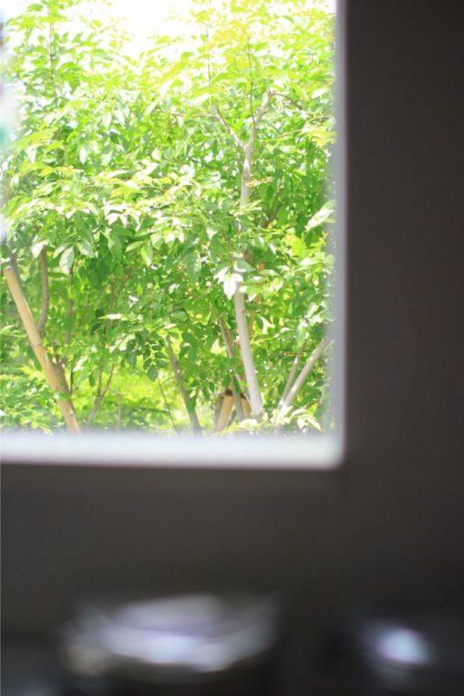 ピカピカの窓で借景を楽しむ