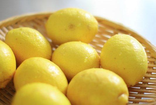 防ばい材不使用のレモンではちみつレモンとセミドライレモン